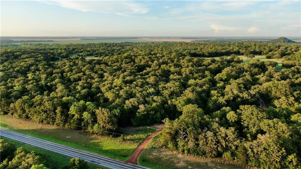 11789 Farm Road 2095, Gause TX 77857 Property Photo - Gause, TX real estate listing