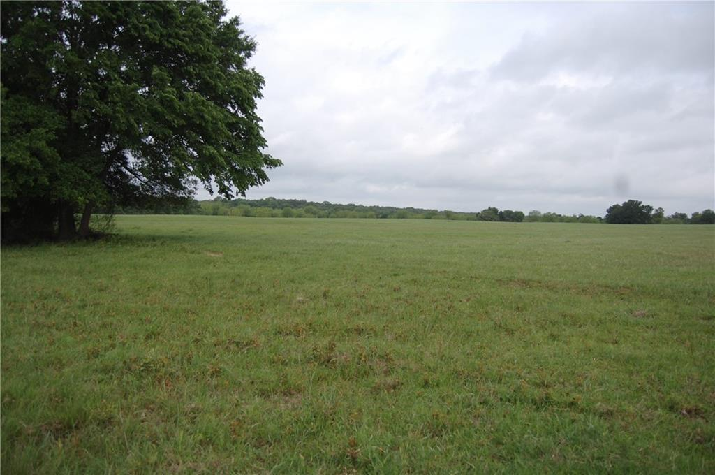 Tract 2 CR 455, Thrall TX 78947 Property Photo