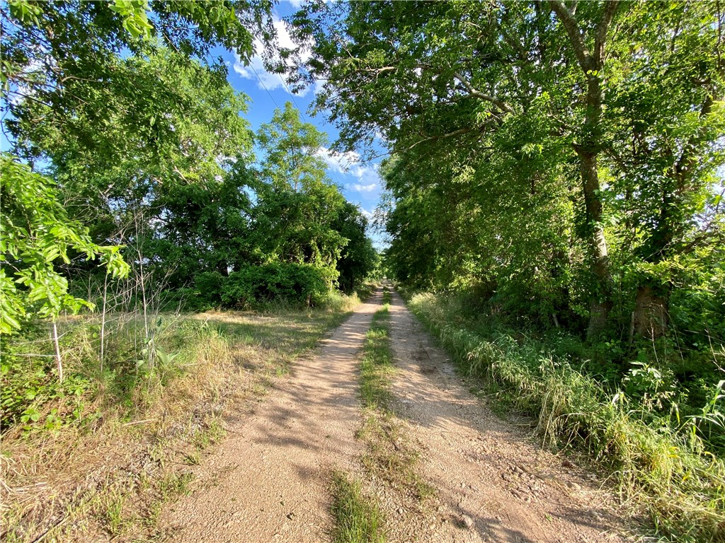 10801 Lot 2 E State Highway 29, Georgetown TX 78626 Property Photo - Georgetown, TX real estate listing