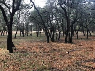 1315 W New Hope DR, Cedar Park TX 78613, Cedar Park, TX 78613 - Cedar Park, TX real estate listing