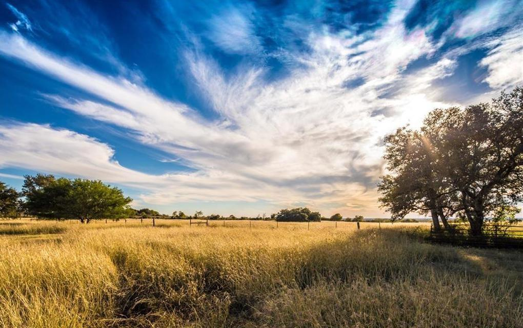 721 Branch RD Property Photo - Geronimo, TX real estate listing