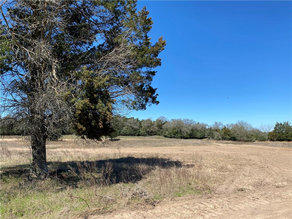 0 CR 107 (TRACT 1) Property Photo - Lincoln, TX real estate listing