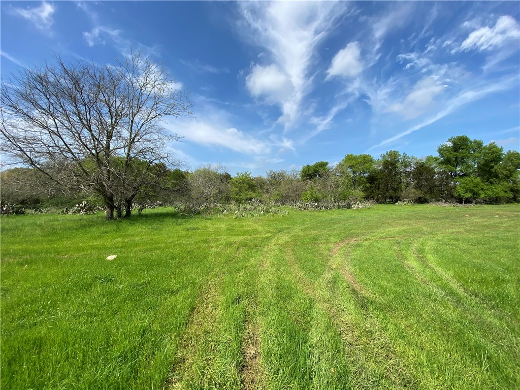 1511 Old Ranch Road 12, San Marcos Tx 78666 Property Photo