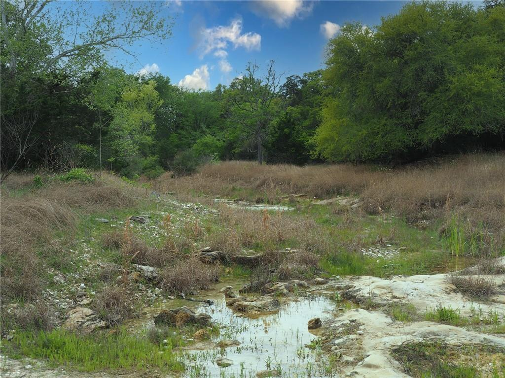 TBD Hwy 71 E Property Photo - La Grange, TX real estate listing