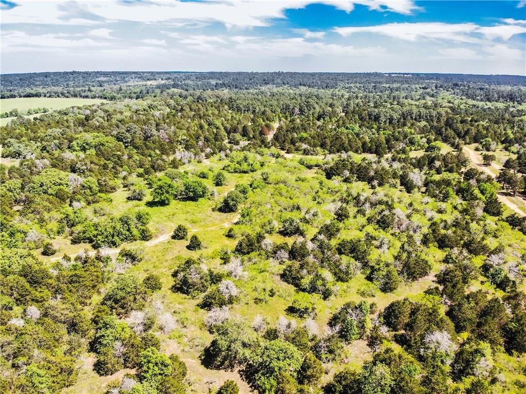 TBD 13 acres Herron TRL, McDade TX 78650, McDade, TX 78650 - McDade, TX real estate listing