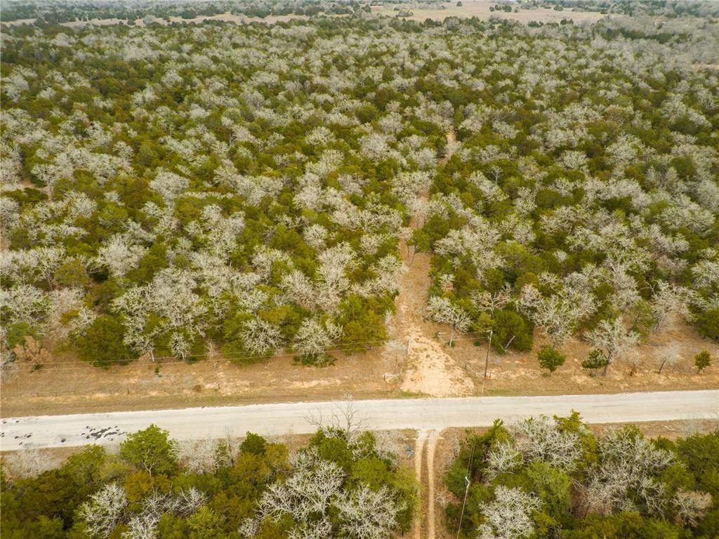 TBD Milam LN Property Photo - Bastrop, TX real estate listing