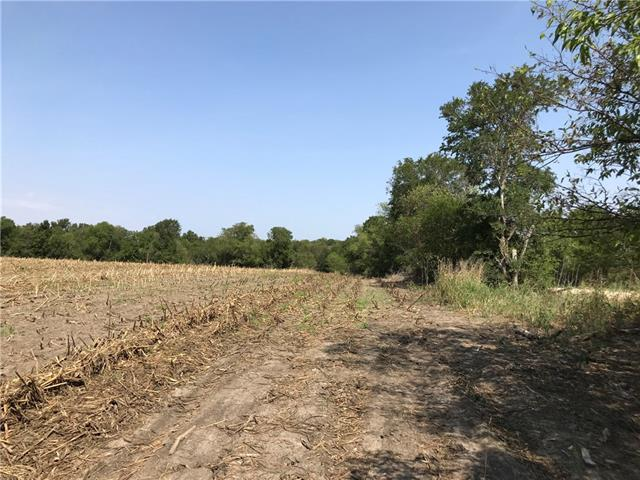 TBD CR 443 Tract 1, Other TX 76632, Other, TX 76632 - Other, TX real estate listing