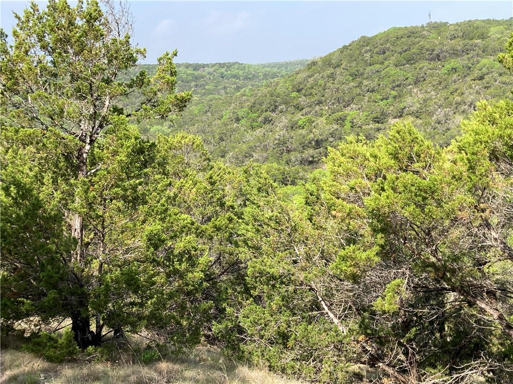 0000 MOUNTAIN TOP CIR Property Photo - Jonestown, TX real estate listing