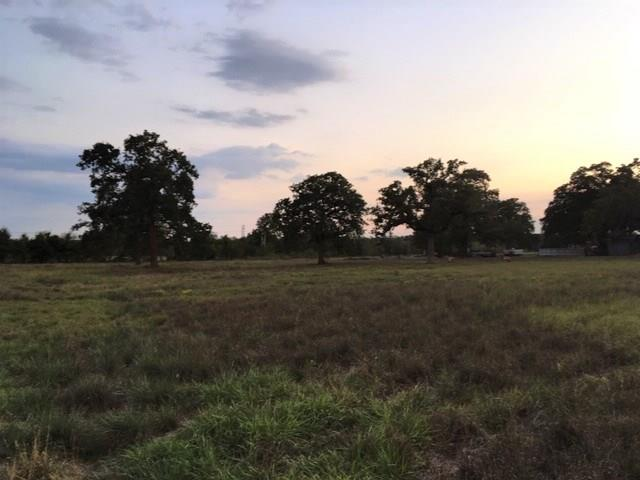 TBD ST HWY 159, Rutersville TX 78945, Rutersville, TX 78945 - Rutersville, TX real estate listing