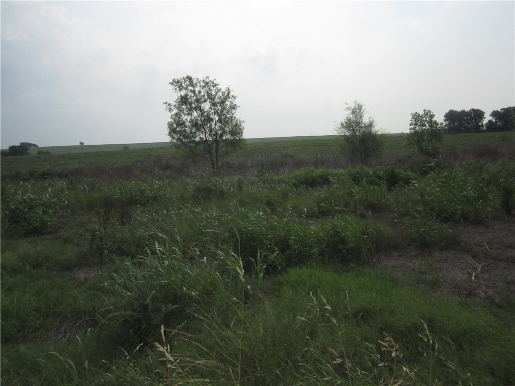 150 County Road 159, Granger TX 76530, Granger, TX 76530 - Granger, TX real estate listing