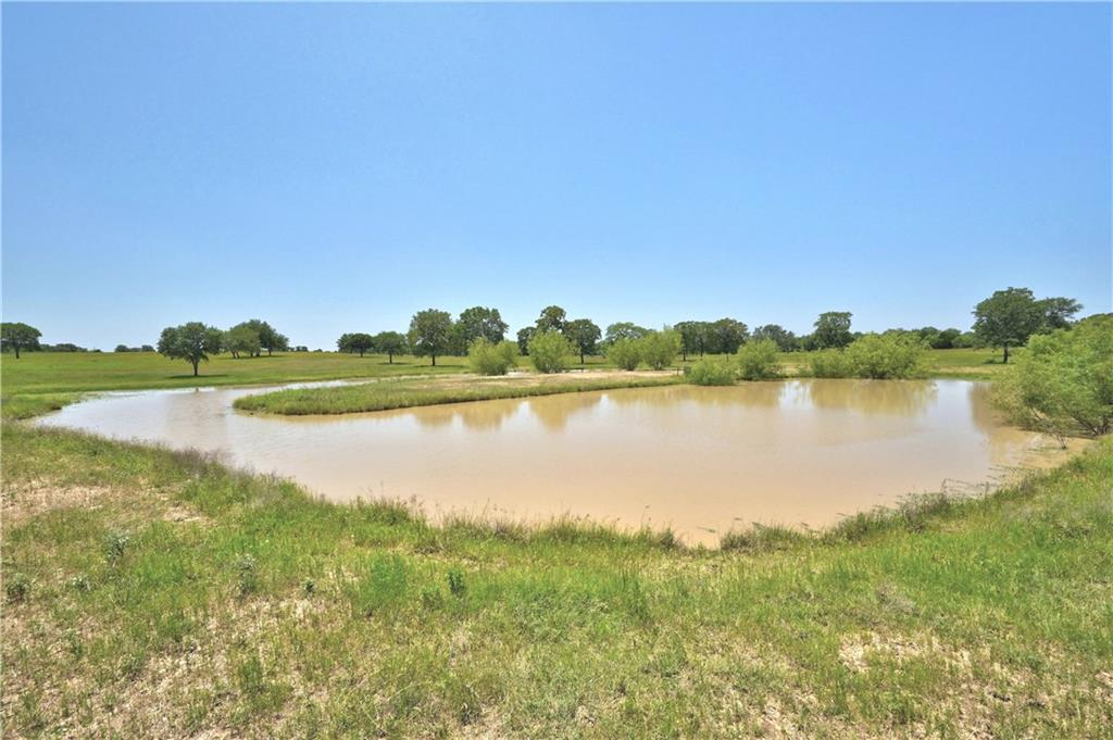 000 County Rd 462, Harwood TX 78629 Property Photo - Harwood, TX real estate listing