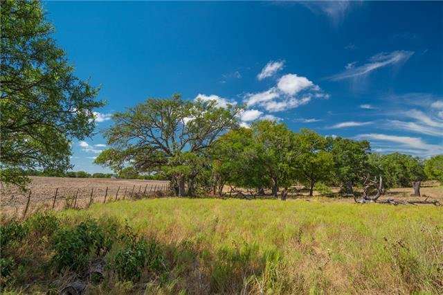 3990 E Ranch Road 2721, Fredericksburg TX 78624 Property Photo - Fredericksburg, TX real estate listing