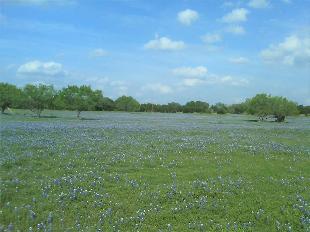 892 Private Road 4405 Property Photo - Kempner, TX real estate listing