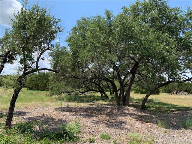 50 Cloudwood Ranch RD, Briggs TX 78608, Briggs, TX 78608 - Briggs, TX real estate listing
