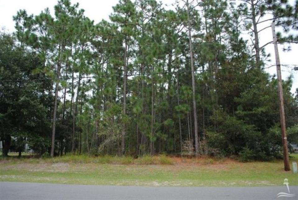 North Carolina Real Estate Listings Main Image