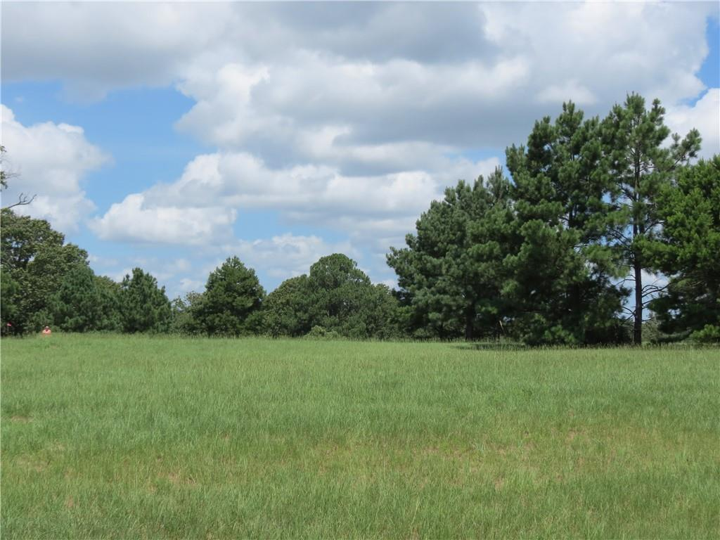 24002 Wildflower CIRS Property Photo - Lindale, TX real estate listing