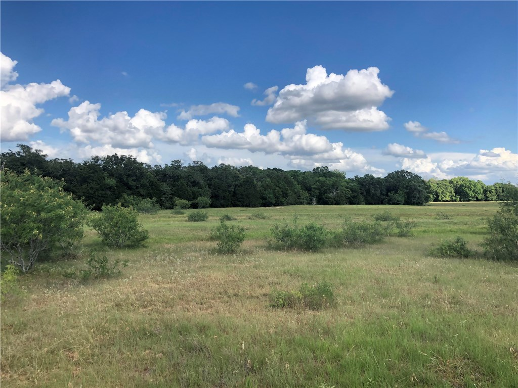 Tract 4 Knobbs RD, McDade TX 78650 Property Photo - McDade, TX real estate listing