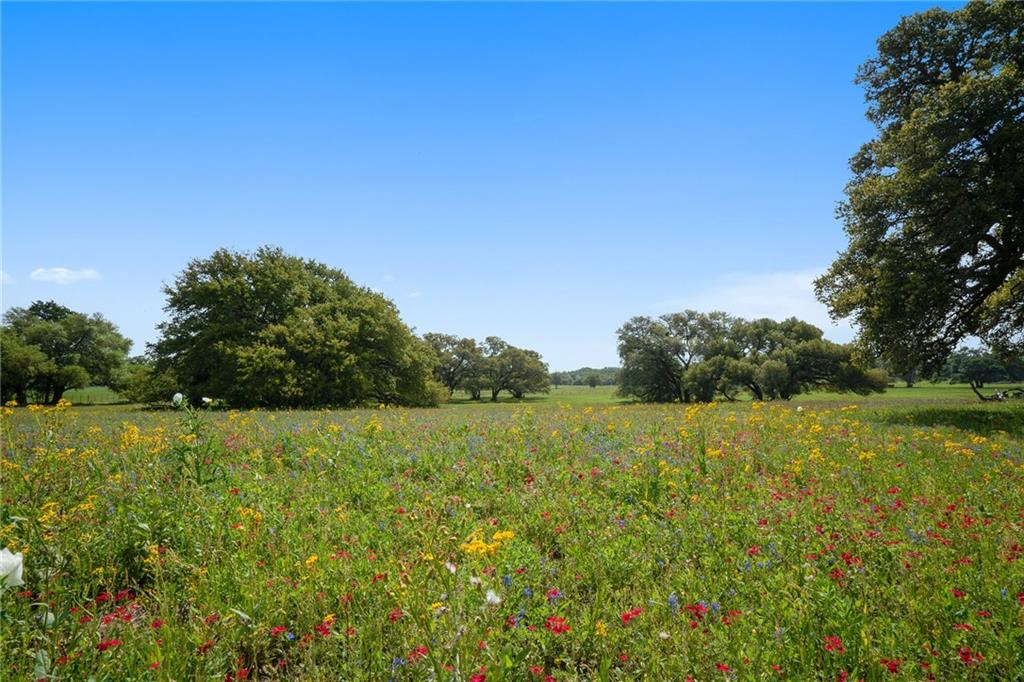 265 Boulton Creek RD, Muldoon TX 78949 Property Photo - Muldoon, TX real estate listing