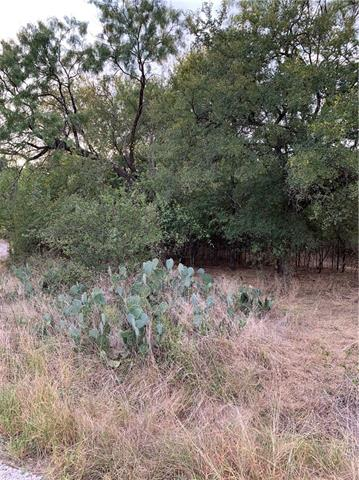 000 Elm Creek Dr, Granite Shoals TX 78654 Property Photo - Granite Shoals, TX real estate listing
