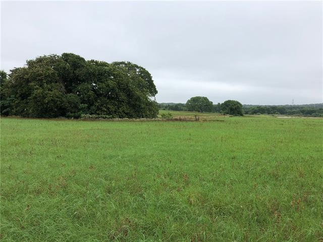 Tract 4 CR 481, Thrall TX 76578, Thrall, TX 76578 - Thrall, TX real estate listing