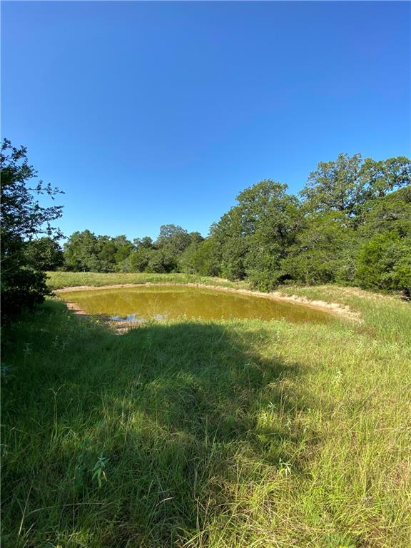 00 Peach Creek RD, Waelder TX 78959 Property Photo - Waelder, TX real estate listing