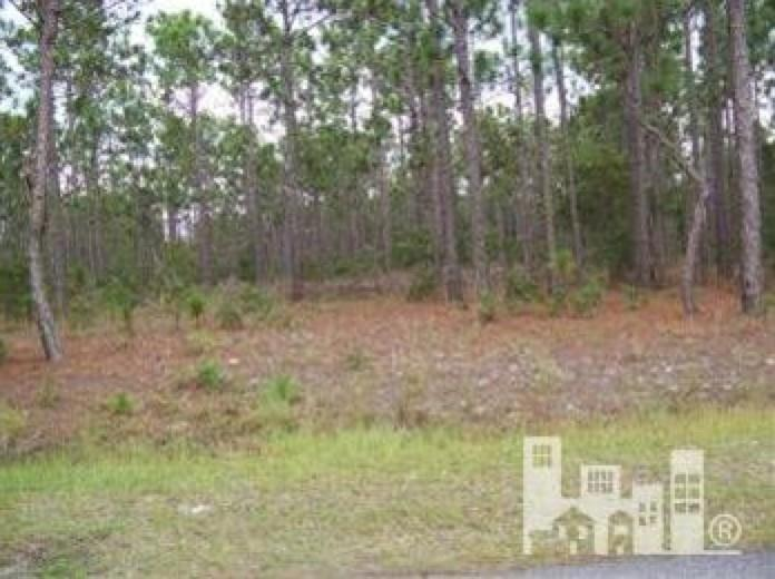 301 Black Hawk RD Property Photo - Out of State, NC real estate listing