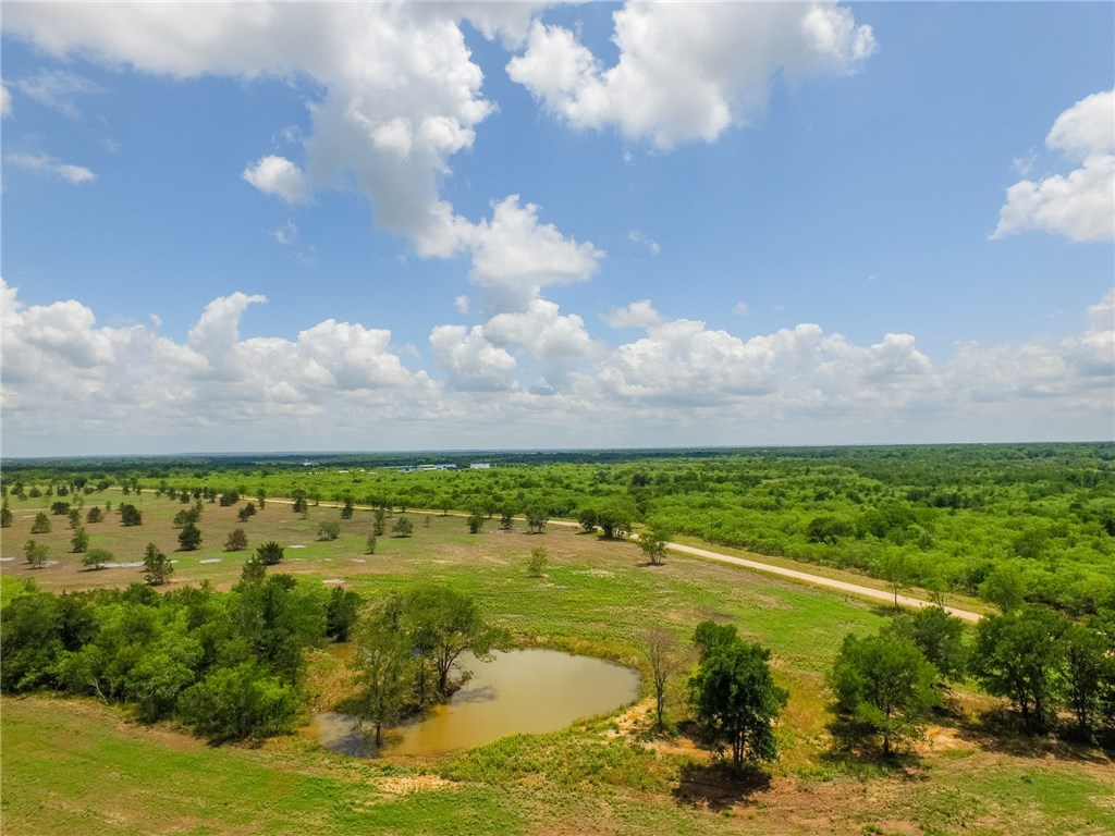 5.58 Acres Out Of John H Livergood 341 Acre Surv Real Estate Listings Main Image