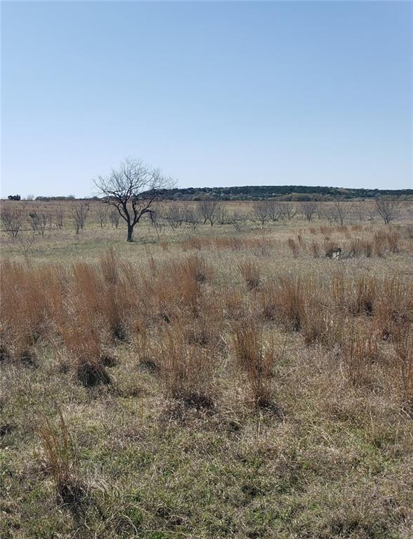 TBD County Road 2800 Property Photo - Lometa, TX real estate listing