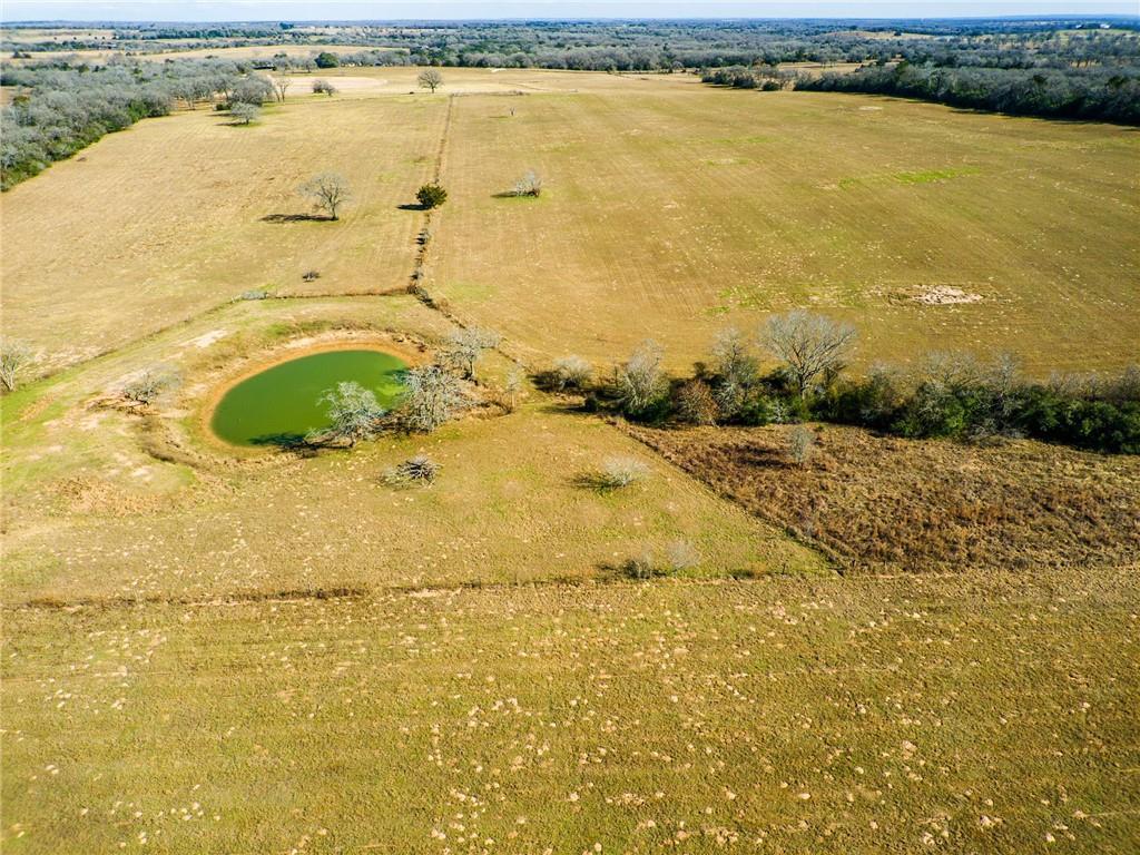1597 CR 441 Property Photo - Harwood, TX real estate listing