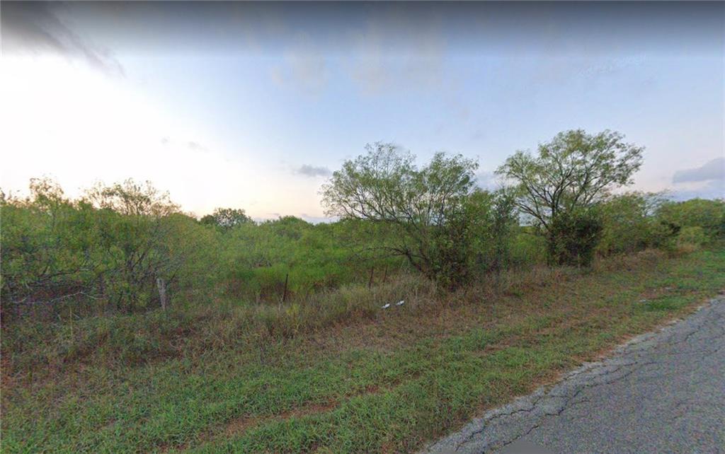 TBD Watts LN, Cedar Creek TX 78612 Property Photo - Cedar Creek, TX real estate listing