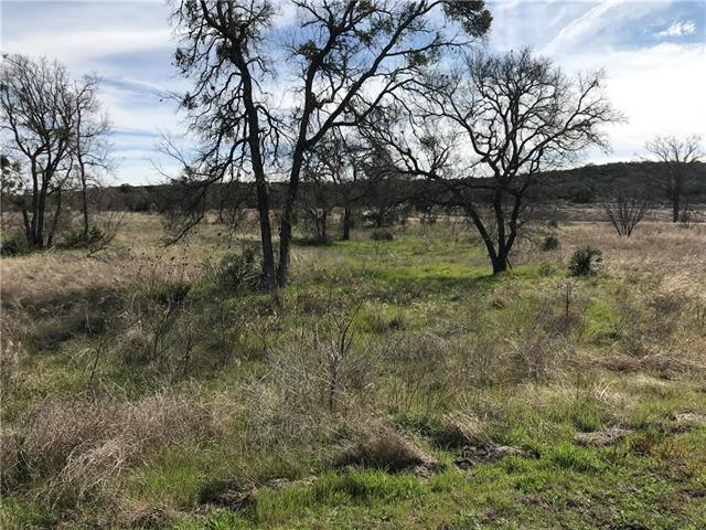 Lot 52-54 Pristine PASS, Buchanan Dam TX 78609 Property Photo - Buchanan Dam, TX real estate listing