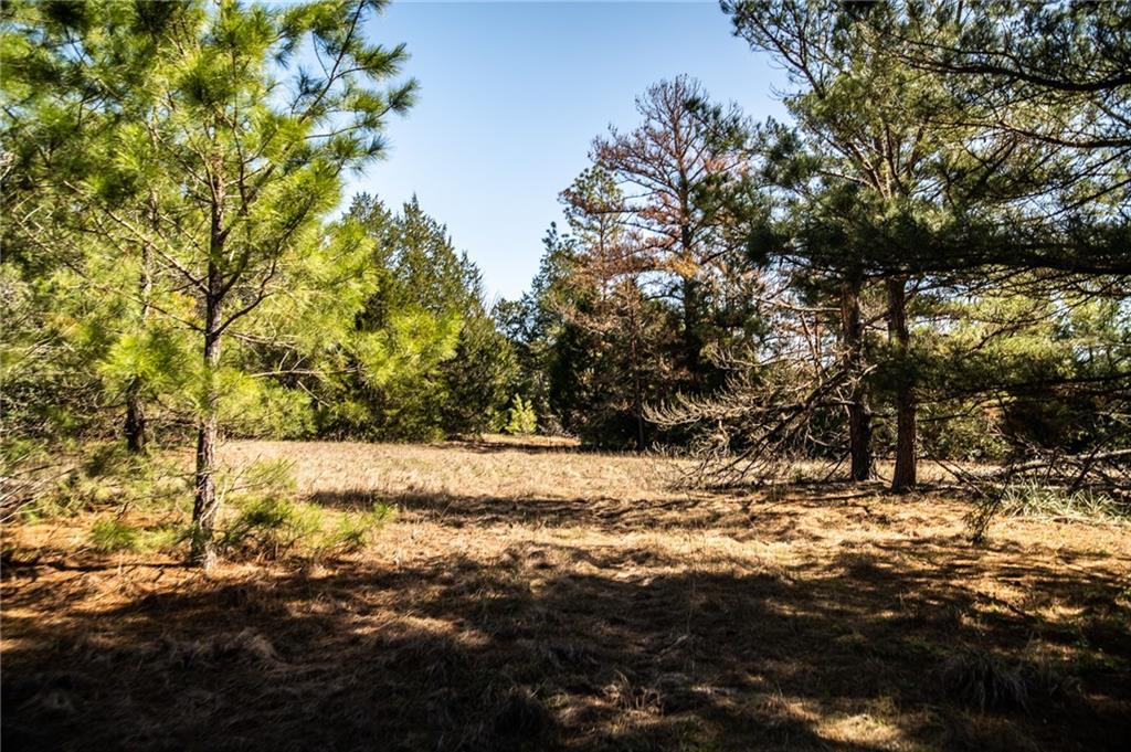 TBD FM 535 RD Property Photo - Smithville, TX real estate listing