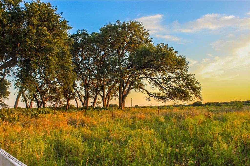1480 S 1626, Buda TX 78610 Property Photo - Buda, TX real estate listing