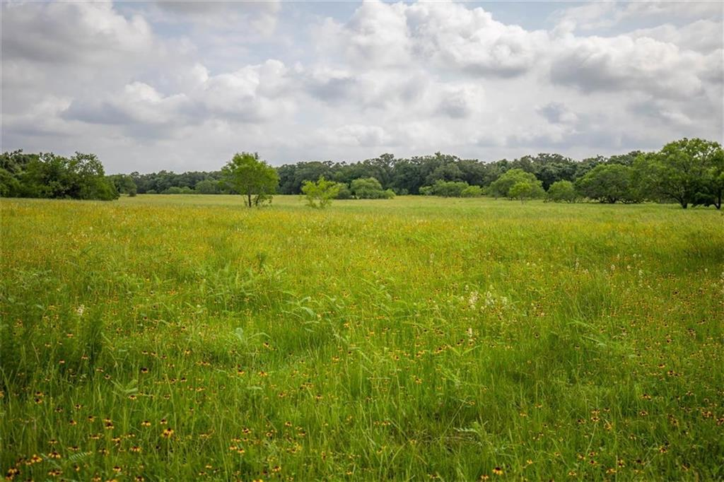 000 CR 437 Property Photo - Gonzales, TX real estate listing
