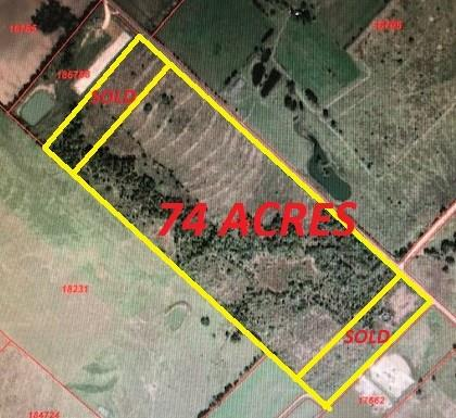 0 County Road 428 Property Photo - Dime Box, TX real estate listing