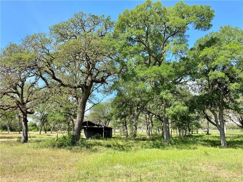 1365 FM 2104 Property Photo - Smithville, TX real estate listing