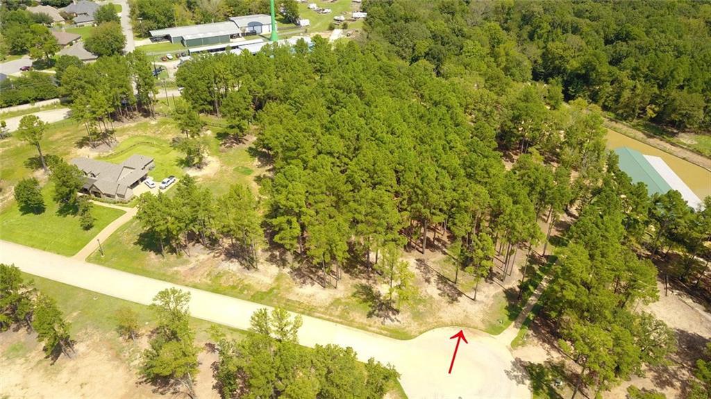 22245 Mallards Cove CT Property Photo - Bullard, TX real estate listing