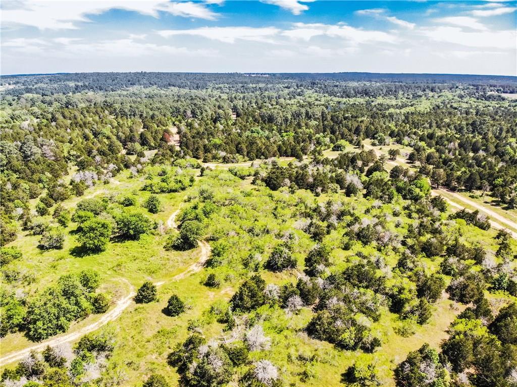 TBD 13 acres Herron TRL, McDade TX 78650 Property Photo - McDade, TX real estate listing