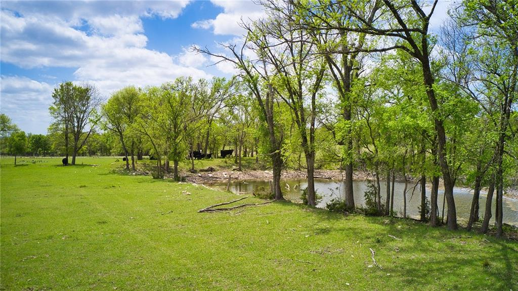 TBD County Road 225 Property Photo - Briggs, TX real estate listing