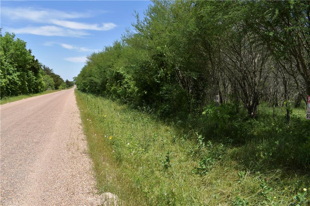 000 (tract 8) E Fuchs RD Property Photo - Carmine, TX real estate listing