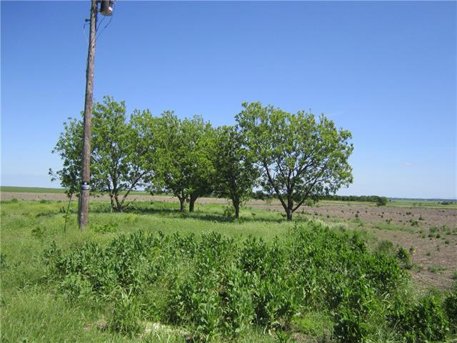 250 County Road 159, Granger TX 76530 Property Photo - Granger, TX real estate listing
