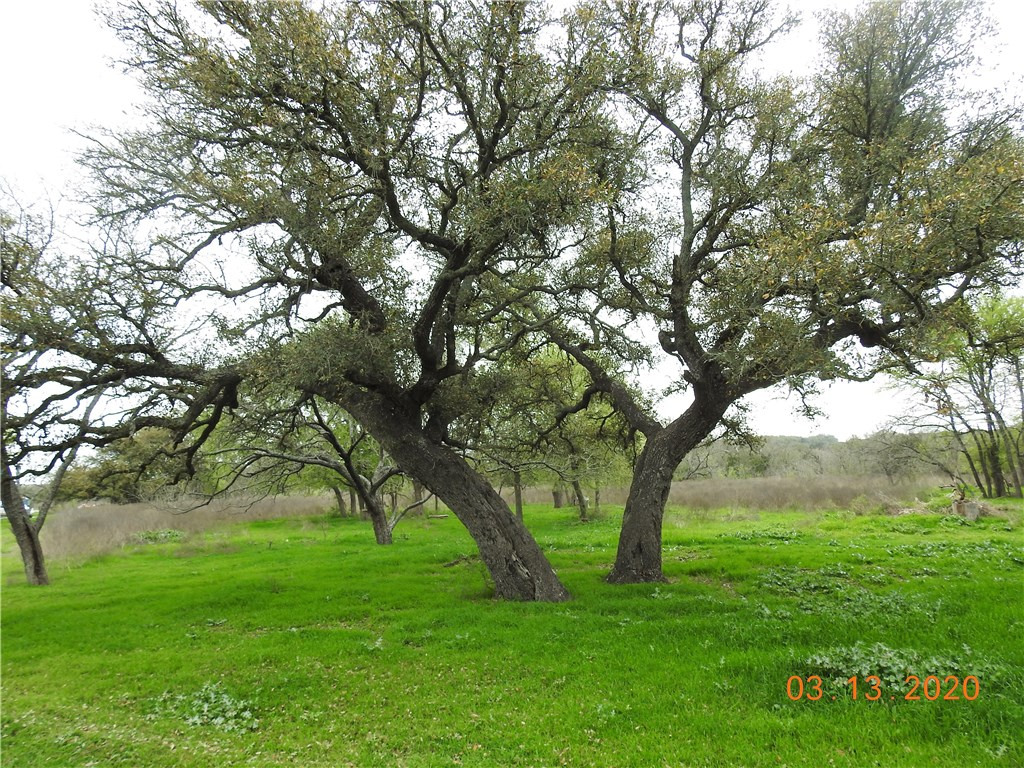 930 County Road 223, Florence TX 76527 Property Photo - Florence, TX real estate listing