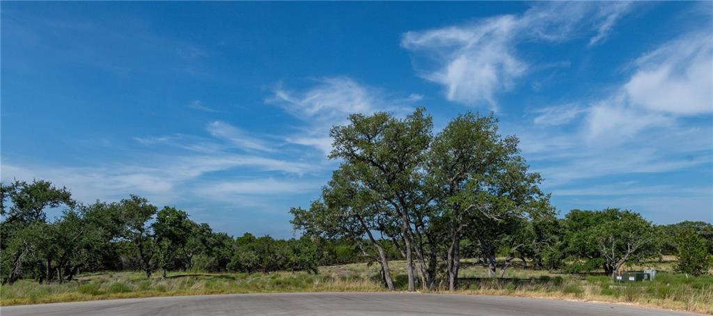 330 Calvary CV, Dripping Springs TX 78620 Property Photo - Dripping Springs, TX real estate listing