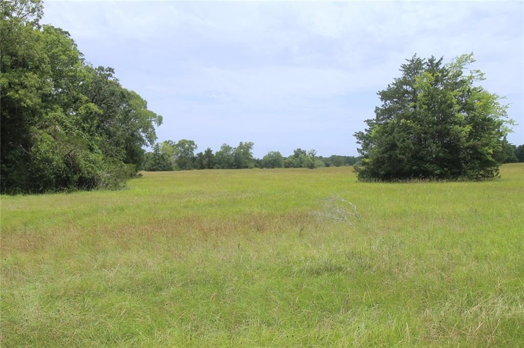 Tract A County Road 118 Property Photo