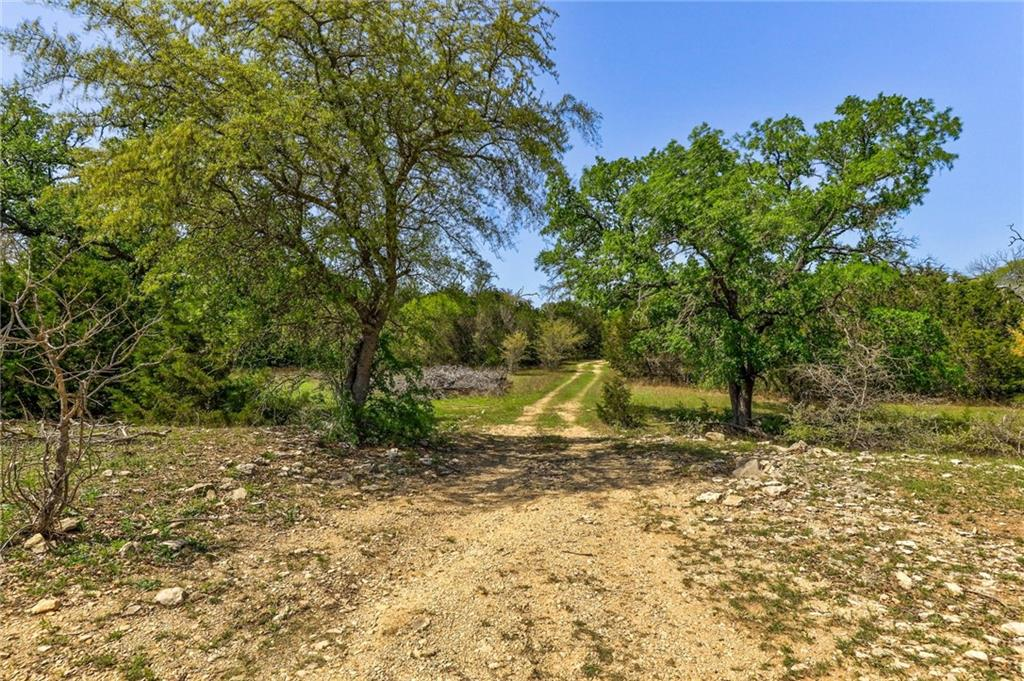 TBD County Road 236 Property Photo - Liberty Hill, TX real estate listing