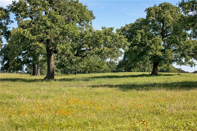 TBD (+/-157 acres) FM 908, Other TX 77836 Property Photo - Other, TX real estate listing