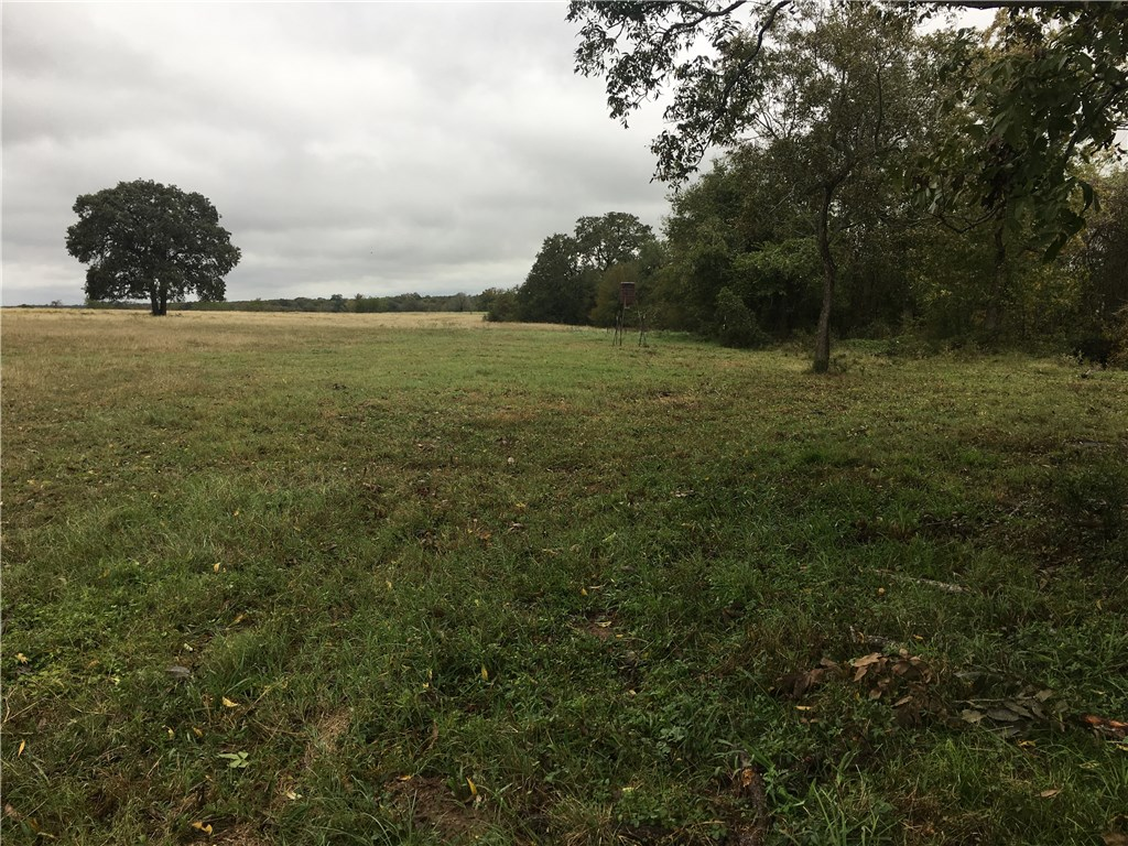 TBD Fm 713, Lockhart TX 78644 Property Photo - Lockhart, TX real estate listing