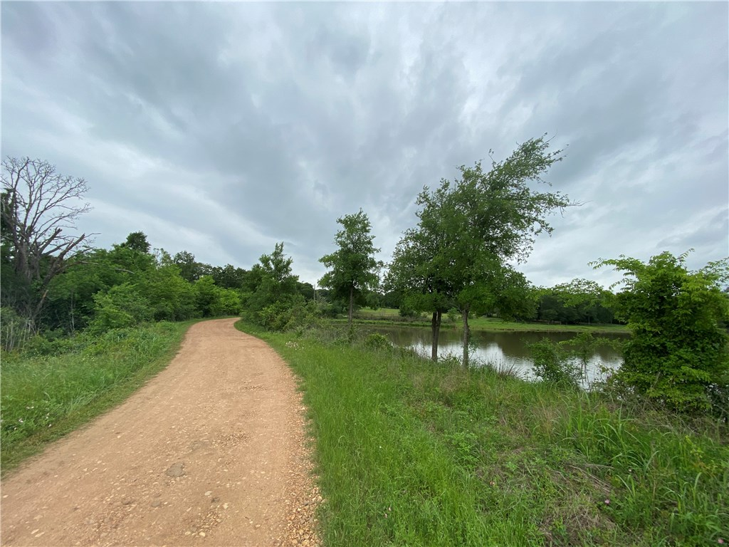 TBD Private Road 8046, Lincoln TX 78948 Property Photo - Lincoln, TX real estate listing