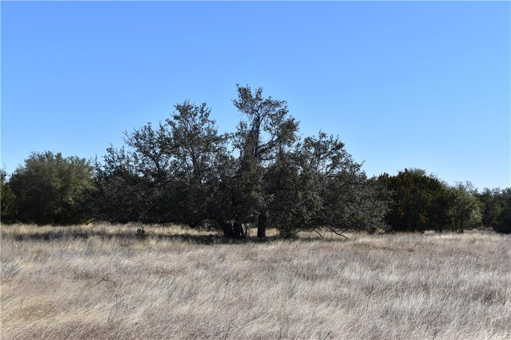 Lot 9 County Road 224 Property Photo - Briggs, TX real estate listing