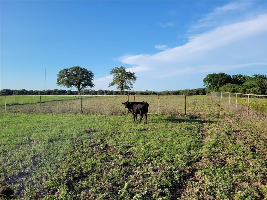 000 Sayers Road Property Photo - Bastrop, TX real estate listing
